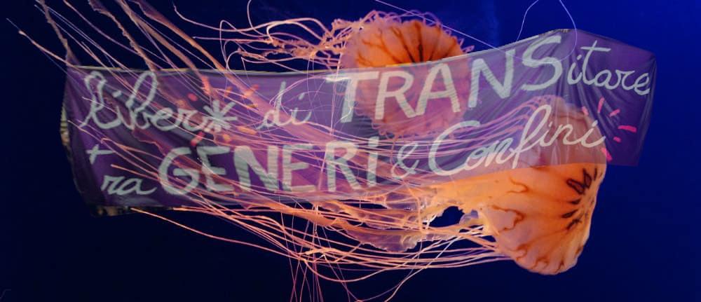 Sciopero dai generi: per un 8M transfemminista queer
